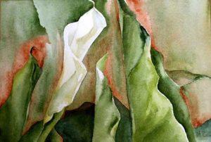 214-Calas XIV aquarelle 35x50